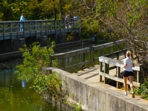 D&R Canal Path