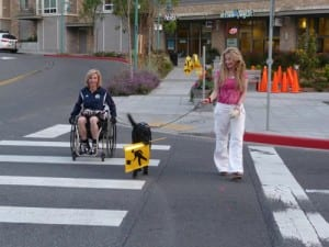 wheelchair and dog with sign