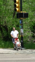 stroller at crosswalk, stroller at crosswalk