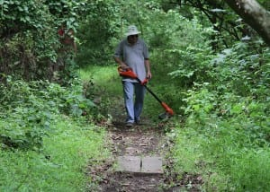 Whacking the weeds on the Millstone Trail