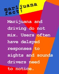 Marijuana and driving do not mix.