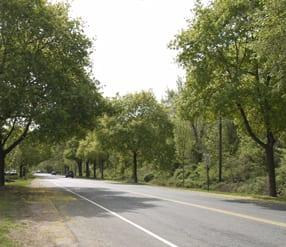 Washington Road