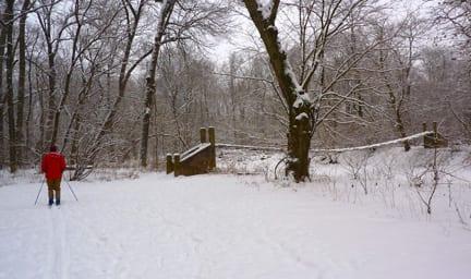 xc skiing in Institute Woods
